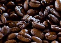 Website - Commercial - Coffee beans